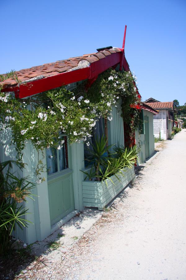 Village ostréicole - N1915